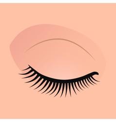 Close female eyes image with beautifully fashion vector
