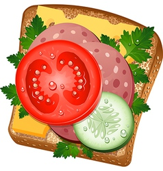 Ingredients for a sandwich vector