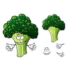 Happy fresh cartoon broccoli giving a thumbs up vector