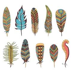 Set of ten feathers vector