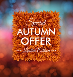 Special autumn offer advertisement poster blurred vector