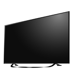 Modern tv lcd led with dandelion flowers on vector