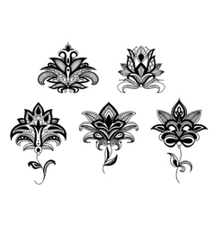 Indian and persian paisley flowers set vector