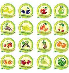 Set of fruit icons vector