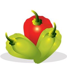 Sweet pepper vector