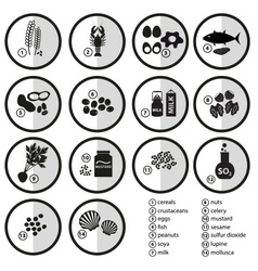 Grayscale set of typical food alergens for vector