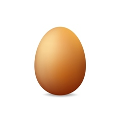 Egg on a white background vector