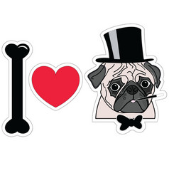 I love pugs old fashion gentleman with hat cigar vector