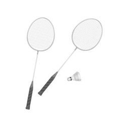 Badminton rackets with shuttlecock isolated vector