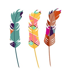 Three color feathers vector