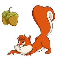 Squirrel with nuts vector