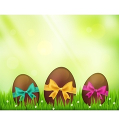 Chocolate easter eggs on green vector