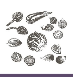 Ink hand drawn fruits and vegetables set vector