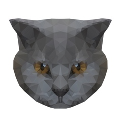 Abstract polygonal cat vector