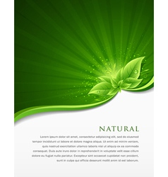 Green leaf ecology concepts vector