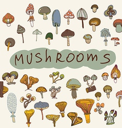 Set of hand-drawn mushrooms vector