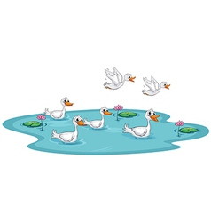 A group of ducks at the pond vector