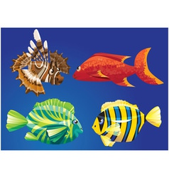 Red sea fishes vector
