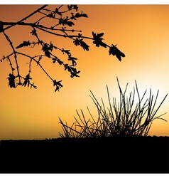 Sunset and shrub silhouette vector