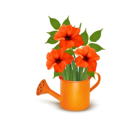 Fresh summer flowers growing in a watering can vector