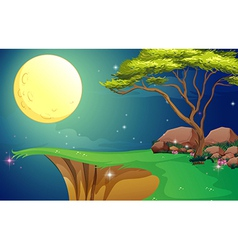 A tree at the cliff under the bright fullmoon vector
