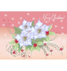 Card white poinsettia and berry vector