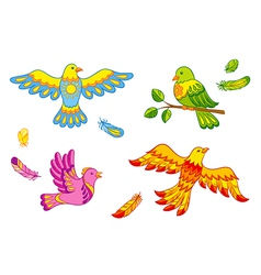 Fantasy birds and feathers vector