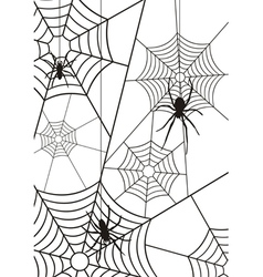 Spiders and web silhouette vector