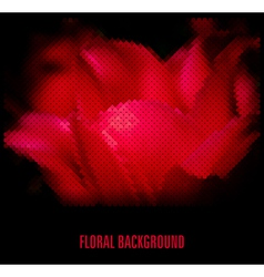 Red flower on a black background vector