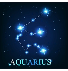 The aquarius zodiac sign of the beautiful bright vector