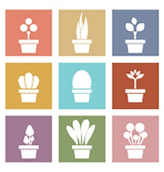 Set of white pot plants symbol vector