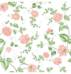 Seamless texture of beautiful roses for textiles vector