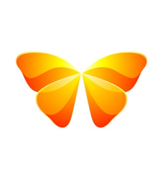 Shiny butterfly vector