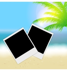 Beautiful summer background with instant photos vector