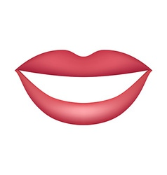 Female lips isolated on white background vector
