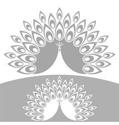 Abstract peacock vector