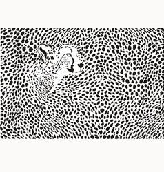 Pattern cheetahs background vector