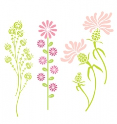 Variety of flowers vector