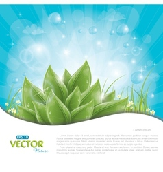 Green leaves against blue sky vector