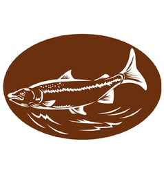 Trout fish set inside oval retro vector