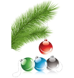 Fur tree branch and xmas decoration vector