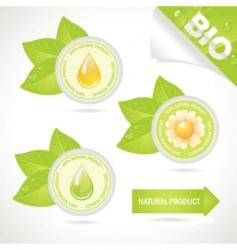 Concept elements natural product vector