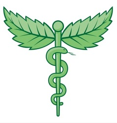 Caduceus with leaves vector