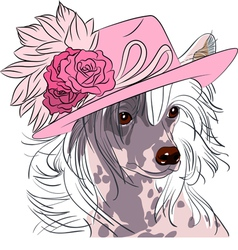 Hipster dog chinese crested breed vector