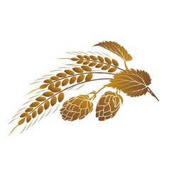 Hops and wheat vector
