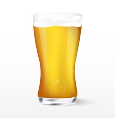 Light beer with the foam vector