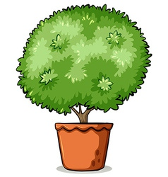 Pot with a green plant vector