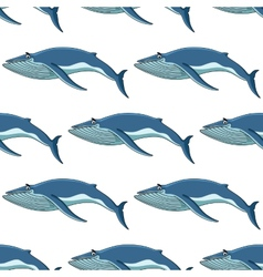 Seamless background pattern of blue whales vector