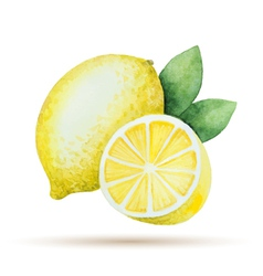 Watercolor lemon yellow vegetable menu vector