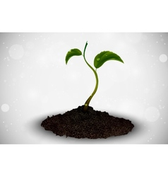 Green sprout grows out vector